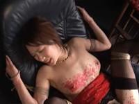柳田やよいのサンプル動画集