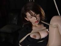 葵あかねのサンプル動画集