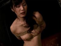 綾女のサンプル動画集